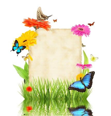 flores exoticas: Concepto de la primavera con el papel en blanco para el texto aislado en el fondo blanco