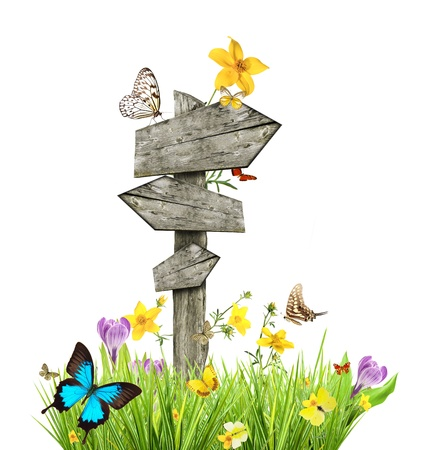 Signpost in meadow with butterflies, concept of spring Stock Photo - 16725440