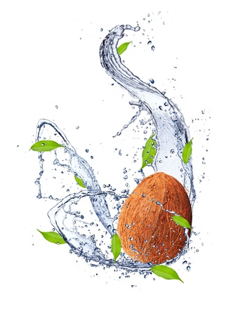 noix de coco: Coconut in water splash, isol� sur fond blanc