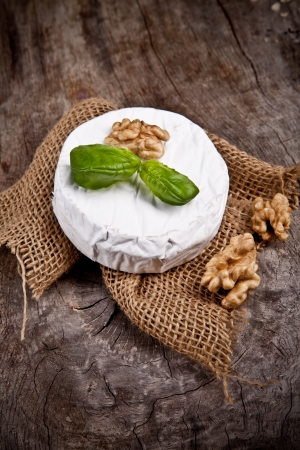 goat cheese: White goat cheese with noble rot on wooden table Stock Photo