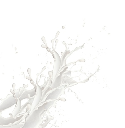 Milk splash, isolated on white background  photo