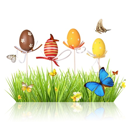 Easter colored eggs in grass, isolated on white background Stock Photo - 17591721