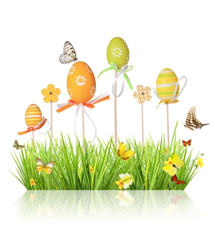 Easter colored eggs in grass, isolated on white background Stock Photo - 17695412