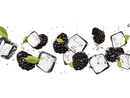 Blackberries with ice cubes, isolated on white background Stock Photo - 18293485
