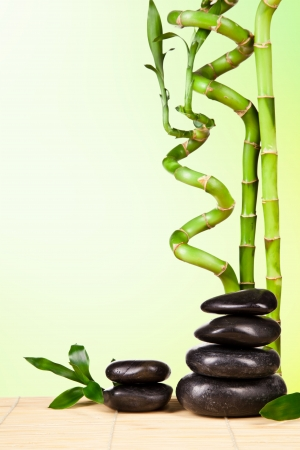 pacification: Spa still life with lava stones and bamboo sprouts with free space for text Stock Photo