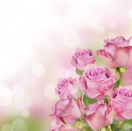 Pink roses bouquet with free space for text photo