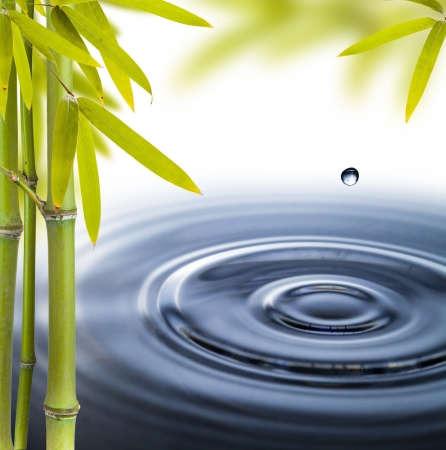 wellness environment: Spa still life with water circles Stock Photo