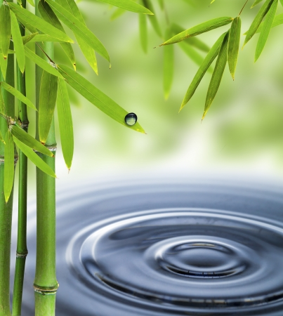 bamboo leaves: Spa still life with water circles Stock Photo
