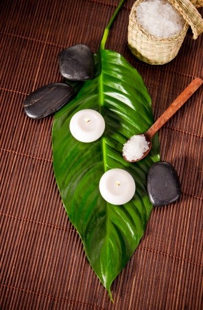bamboo therapy: Spa still life with green leaf and lava stones Stock Photo