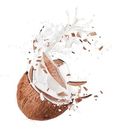 noix de coco: Noix de coco fra�che Banque d'images