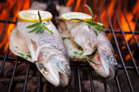 kipper: Delicious grilled trouts on fire Stock Photo