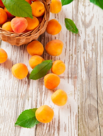 upper half: Fresh harvested apricots in basket Stock Photo