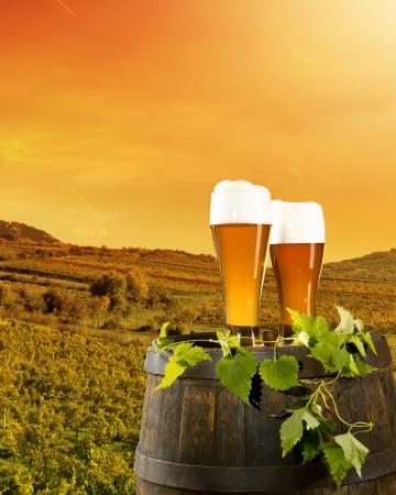campagne rural: tonnelet de bi�re avec des verres de bi�re sur le paysage rural Banque d'images