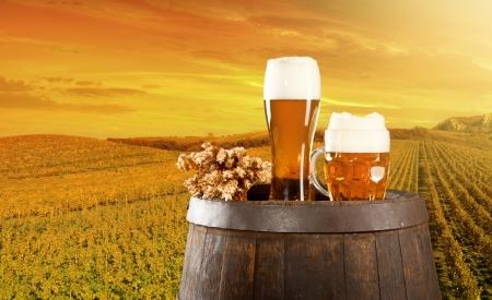 campagne rural: tonnelet de bi�re avec des verres de bi�re sur fond de paysage rural