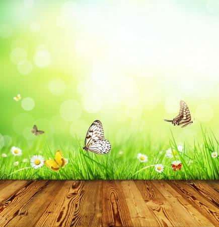 텍스트에 대 한 공간을 가진 추상 꽃