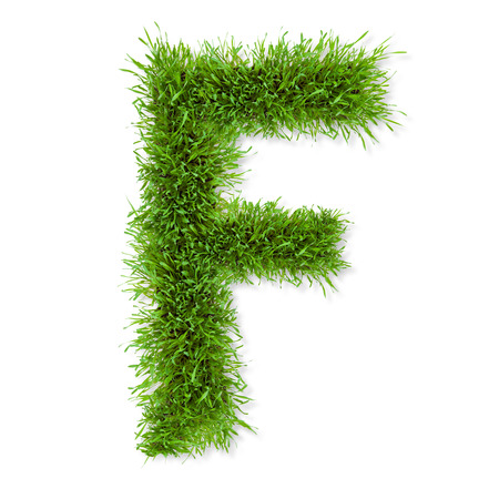 Fresh grass letter  F  isolated on white background photo