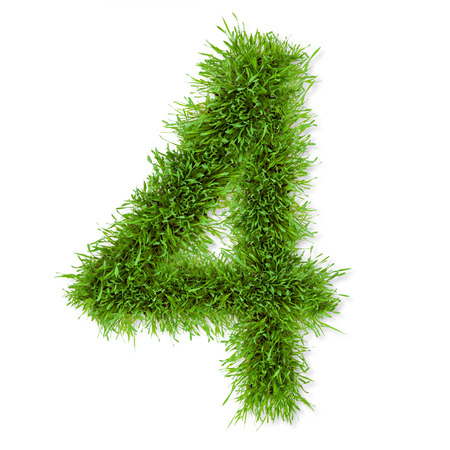 Grass number photo