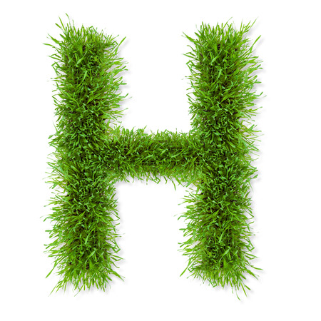 sign h: Fresh grass letter  H  isolated on white background