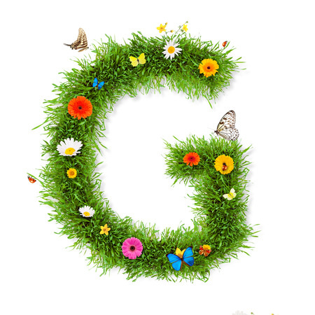 grass isolated: Spring letter Stock Photo