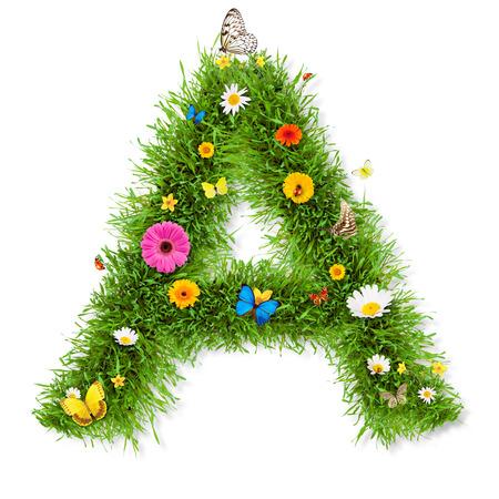 flower alphabet: Spring alphabet letter Stock Photo