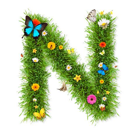 letter n: Spring alphabet letter Stock Photo
