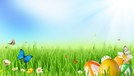 Fresh spring meadow with Easter eggs and butterflies photo