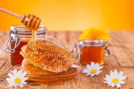 Honing stilleven