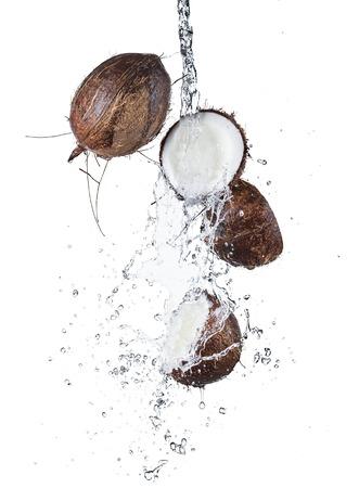 cocotier: Noix de coco dans éclaboussures Banque d'images