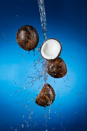 falling coconuts in the water photo