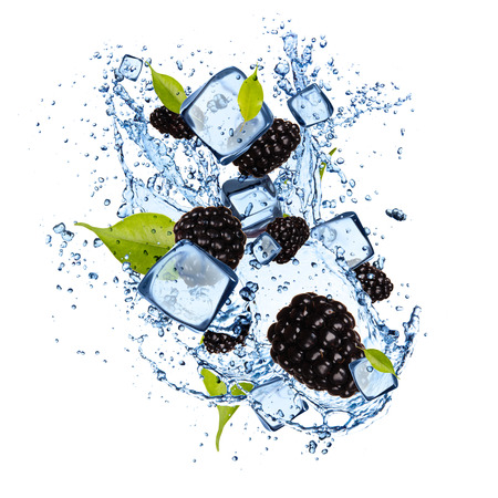 water frozen: Ice blackberries isolated on white background