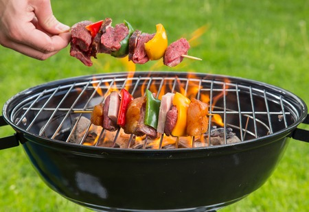 kebob: Meat and vegetable skewer on barbecue grill with fire