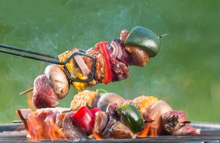 shishkabab: Meat and vegetable skewer on barbecue grill with fire