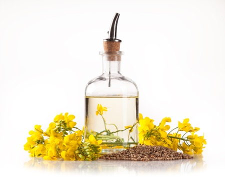 biodiesel: Isolated rape oil with blossoms on white  Stock Photo