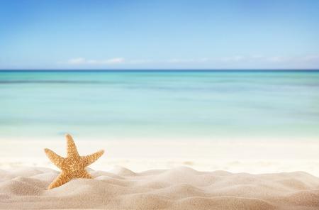 サンディ夏ビーチとぼかしの背景に海