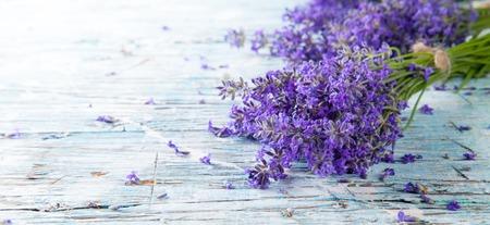 Lavendel bloeit op hout Stockfoto