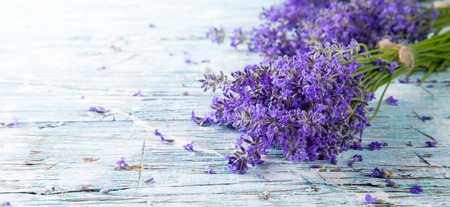 dried herb: Lavender blossoms on wood