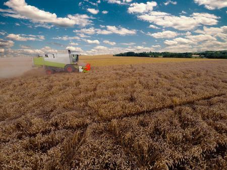 tanker type: combiner harvesting on grain field, side view Stock Photo