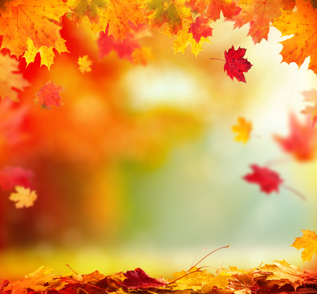 calm background: Moody autumn background with falling leaves on wooden planks