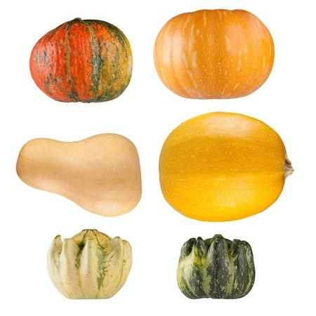 Set of isolated pumpkins on white background photo