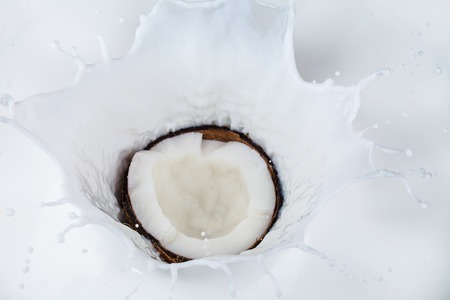Half cut of coconut falling into milk splashes