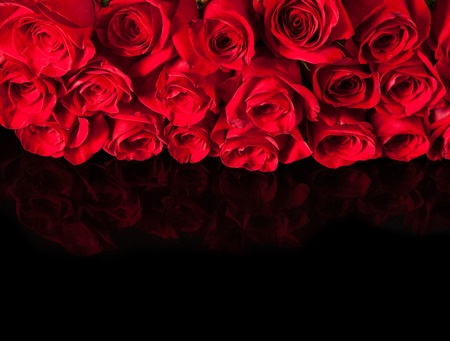 black and red: Red roses on black background