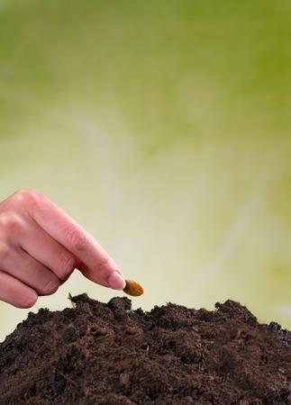 siembra: Semilla de siembra Mano de la mujer en pila de suelo Foto de archivo