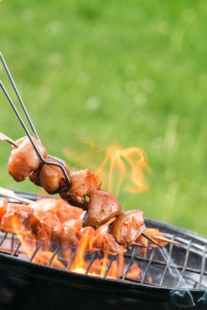 shishkabab: Delicious chicken meat skewer on grill