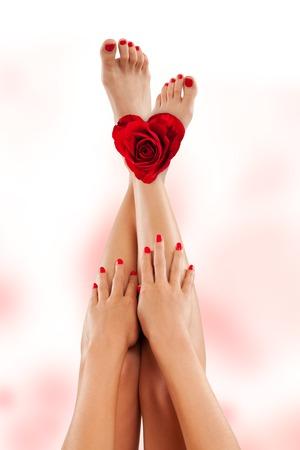 pies sexis: Piernas femeninas perfectas con rosa, aislados en fondo blanco Foto de archivo