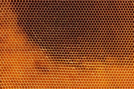 abejas panal: Detalle abejas af textura de panal