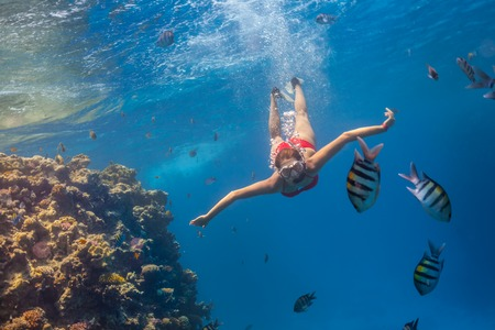 descends: Freediver woman descends into deep blue water with coral