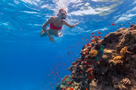 Freediver woman descends into deep blue water with coral