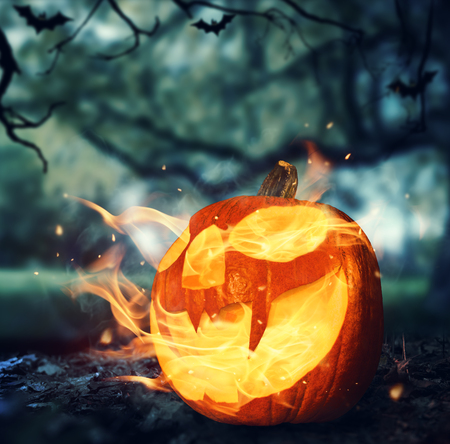 holiday symbol: Burning halloween pumpkin on leaves in a forest at night Stock Photo
