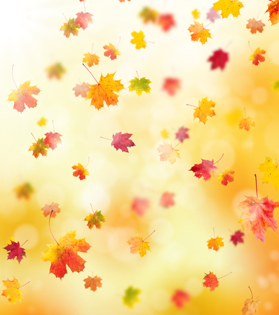 wallpaper vibrant: autumn background with falling leaves, copyspace for text