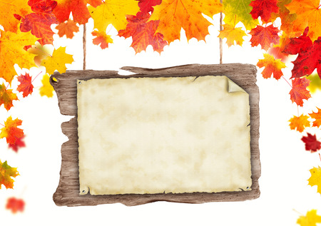 wood sign: autumn background with blank poster, copyspace for text. Isolated on white background